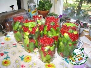 Banks to sterilize, on the bottom put the greens, put cucumbers, pour the red currants. Pour 1.5 teaspoons of coarse salt.
