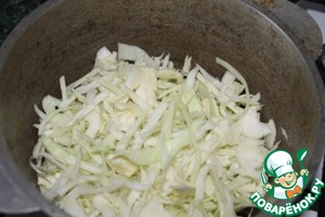 In a pot put half the shredded cabbage.