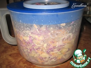 To close the salad container lid (or cling film).  Put into the refrigerator for 1 hour.