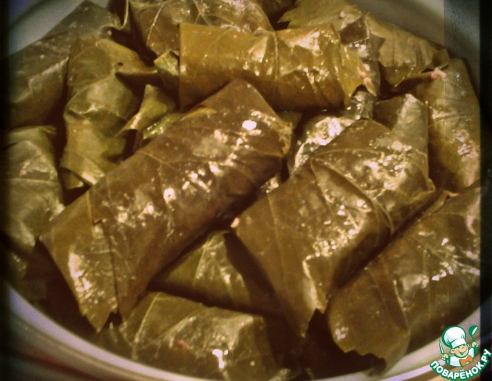 Толма армянская – кулинарный рецепт