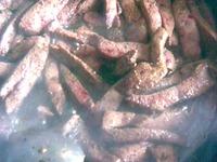 Салат из печени и грибов ингредиенты