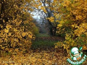 В Италии ведь осень, вроде, как у нас.   И в золоте деревья, несомненно,    И листья, падая, вступают в тихий вальс,    И кружатся бесшумно, бессловесно.       Но всё ж, мне кажется, она другая там -    Неспешная тихоня-златовласка,   Плывет в воздушном сарафане по полям,   И словно бы рождает чудо-сказку.      Как славно сесть с бокалом белого ликёра   В ротанговое кресло возле дома,   Укутав пледом свои ноги для тепла,   Под золотом раскидистого клена.       И молча пригублять его и чудо ждать,   Природой наслаждаться с умиленьем,   Вслед осени смотреть и точно знать,   Что время застывает на мгновенье!