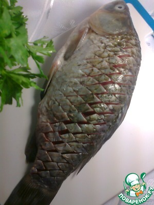 Carp, wash, remove the gills and make cuts across the carcass, on the photo.