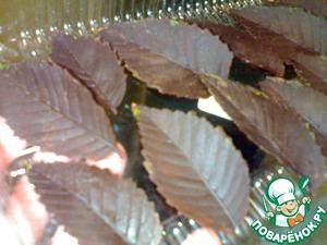 Сложить шоколадные листики в коробочку, накрыть пакетиком и убрать в морозильную камеру.