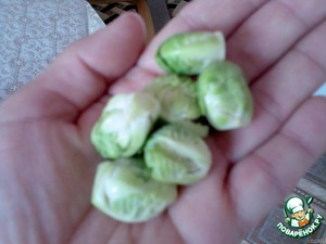 Yes, I want to add that the Brussels instead of cabbage, you can put cauliflower or cabbage. This year I planted Brussels sprouts for the first time and here is what I have. Forks sturdy, crisp.