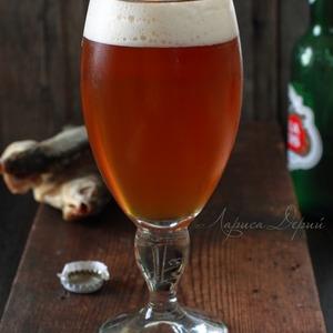 Фото: Домашнее пиво