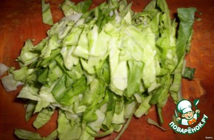 cabbage cut into strips