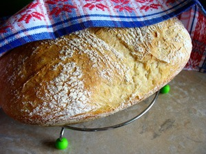 Bread without kneading