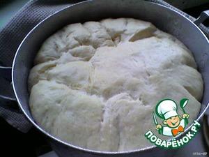 В теплое молоко всыпать соль и сахар, размешать, добавить дрожжи, дать им разойтись. Всыпать порциями просеянную муку. Когда тесто станет густоватым, добавить растительное масло и вымесить, чтобы масло впиталось в тесто.   Затем домешать еще муки до мягкого теста. Накрыть полотенцем и поставить в тепло для подъема. Дать подняться в два раза, затем приступить к формовке булочек.