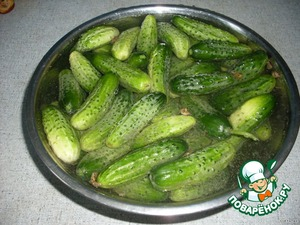 Freshly picked cucumbers to soak for two or three hours in cold water.