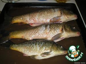 Рыбу почистить, выпотрошить, помыть и положить на противень, слегка смазаный маслом, посолить и поперчить рыбу
