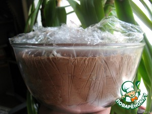 Close the Cup with cling film and put the dome in the freezer for at least 6 hours.