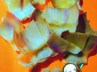 Артишок и секреты приготовления ингредиенты