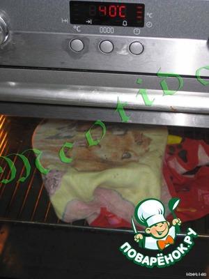 Хорошо вымесить тесто руками, положить в смазанную растительным маслом миску, укутать полотенцем и поставить в разогретую до 40С духовку на 1 час.