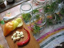 1. Почистить болгарские перцы, помыть помидоры, помидорки наколоть зубочисткой около плодоножки (чтобы не полопались), уложить все в банки (зелень, чеснок, помидоры, перцы полосками).   2. Залить кипятком, оставить остывать, чтобы можно было взять банку руками