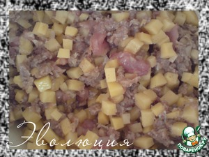 Stuffing mix, sprinkle with salt and pepper.