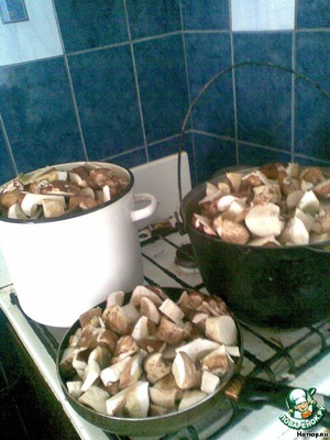 Mushrooms wash, cut into pieces, cover with water and boil it since boiling 20 min.