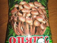 Ленивые голубцы с грибами (опята) ингредиенты