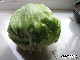 The salad my.