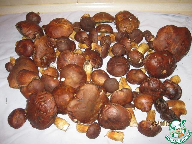 как вкусно приготовить польские грибы