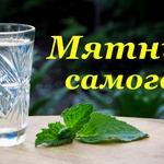 Рецепт Мятного самогона