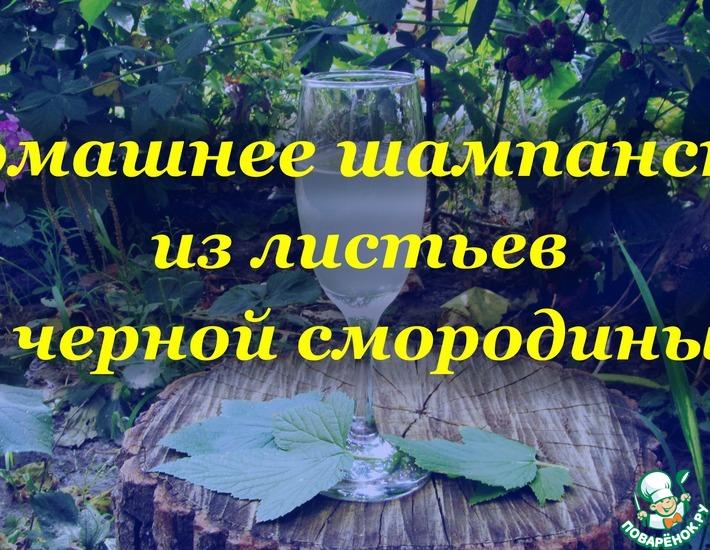 Рецепт: Домашнее шампанское из листьев черной смородины