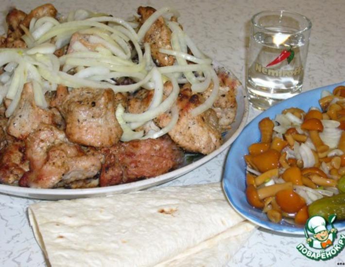 шашлык из свинины на кефире рецепт