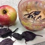 Творожный десерт с яблоком и базиликом