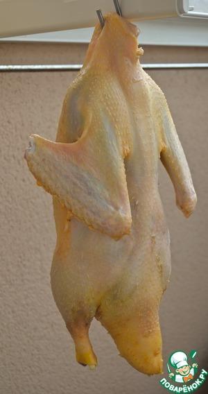 4.Вывесить утку, если возможно, на свежем воздухе, и дать проветриться 12 часов (на ночь). Если у вас нет возможности подвесить утку на крючке, просто положите ее на решетку, установленную над противнем, чтобы ее спина не соприкасалась с дном противня. Эта процедура позволяет подсушить утиный жир. Затем вновь разогреть маринад и хорошенько «искупать» в нем утку еще раз. Вывесить проветриваться еще на 4 часа.