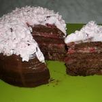 Экспресс-торт в микроволновке