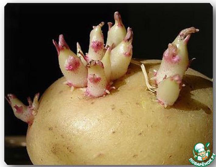 Картошка лечение суставов ванночки при болях в суставах рук