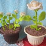 Торт Горшочек с розой