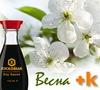 Конкурс рецептов Весна + К