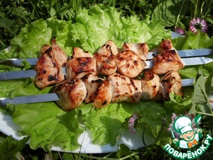 Chicken skewers with Apple-soy marinade