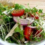 Салат из маринованного фенхеля с помидорами