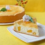 Нежнейший творожный пирог с персиками Светланка
