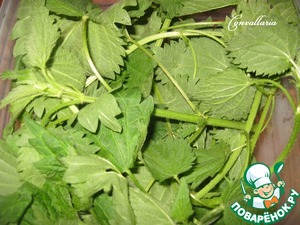 Young nettle leaves pour boiling water for a few minutes, rinse with cold water, wring out and arbitrarily cut.
