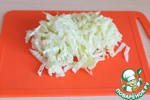 Cabbage cut into strips.