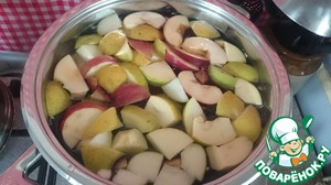 When the liquid boils, candied slices should be gently lowered into the pot. Fire and reduce at a gentle simmer cook for 10-15 minutes (depending on apples), until apples are soft. At the end of cooking the compote, put the zest of lemon, orange or cinnamon. (I used candied orange peel - a sort of candied, lay out and post about them).   Turn off the heat, close the lid.