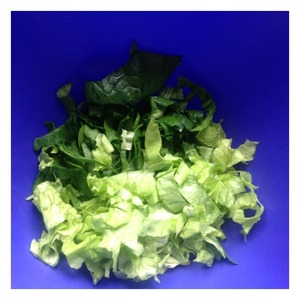 Cut lettuce and spinach.