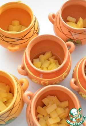 Begin to collect the pots.   Pour into a pot a ladle of broth and put it on the bottom of the coarsely chopped potatoes