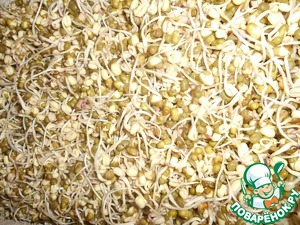 If You want to mash grew faster, rinse it 5-6 times a day without damaging sprouts. However, I never did and a day or 2 it usually grows to the desired size. You need to ensure that towel remains moist and does not dry out.  When the sprouts reach a length of 2 cm, mash is ready to use. But some germinated and then up to 5-6 days. I have it looks like two days later.