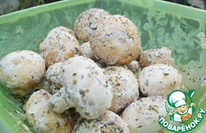 The mushrooms thoroughly lubricated cream, sprinkle with herbs de Provence, stir.  Allow to stand for 15 minutes.  Then sprinkle with salt and put on skewers.