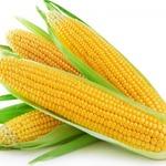 Кукуруза вкусная