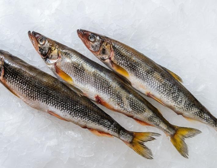 """Производители со всей России привезут на """"Рыбную неделю"""" лучшие продукты по сниженным ценам"""