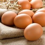 Разделение яйца на белок и желток