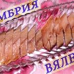 Вяленая скумбрия