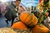 Лучшие события заключительных выходных фестиваля «Золотая осень»