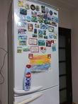 Холодильник с Sanita