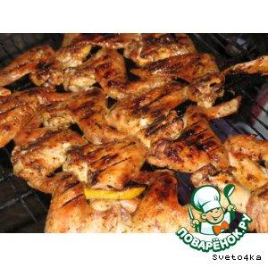 Рецепт: Куриные крылышки на костре
